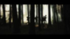 woods death.jpg