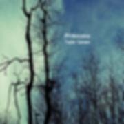 #Iridescence Album cover