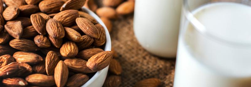 Classic Nut Mylks Recipes & Guide