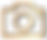 gold camera logo.png