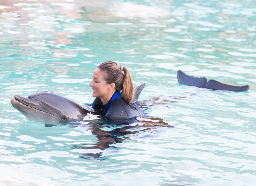 dolphin girl joy