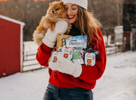 Gift Ideas for Dog Owners | Purina Discovery Box