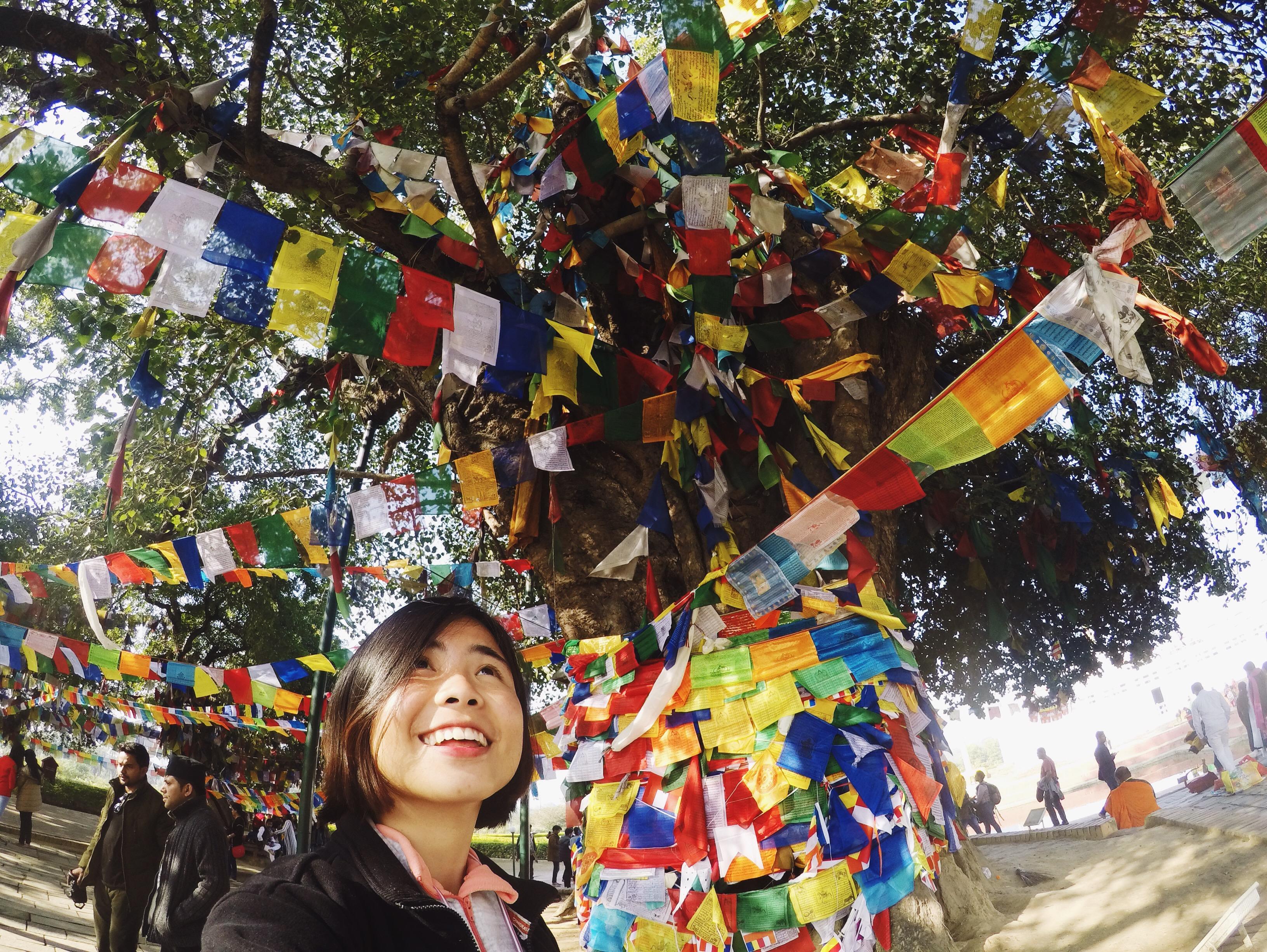 Bodhi Tree, Lumbini, Nepal