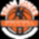 team-hines-logo-large-white-600.png