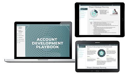 initiatives_process_account-development-