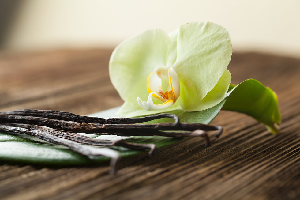 Bunch of vanilla sticks and flower.jpg
