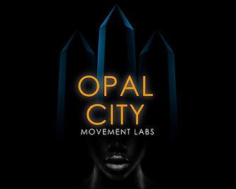 OML Brand Logo Pic_NO NAME 2021.jpg