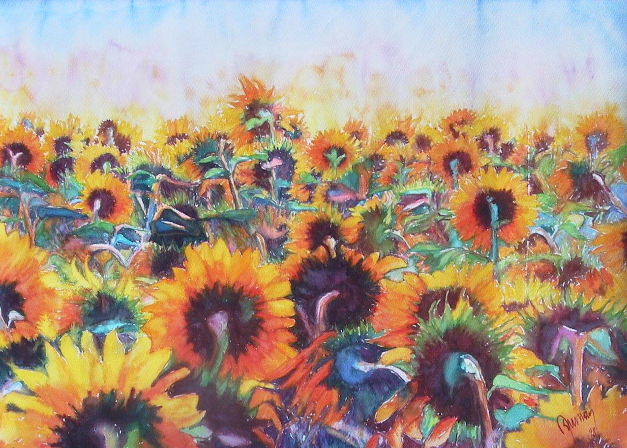 Sun flower