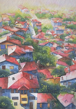 Roofs from Zile