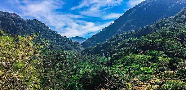 latin-american-landscape.jpg