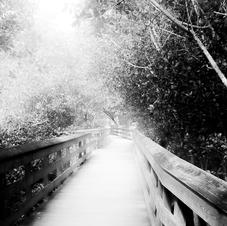 Imperial River Park, Bonita Springs (1 o
