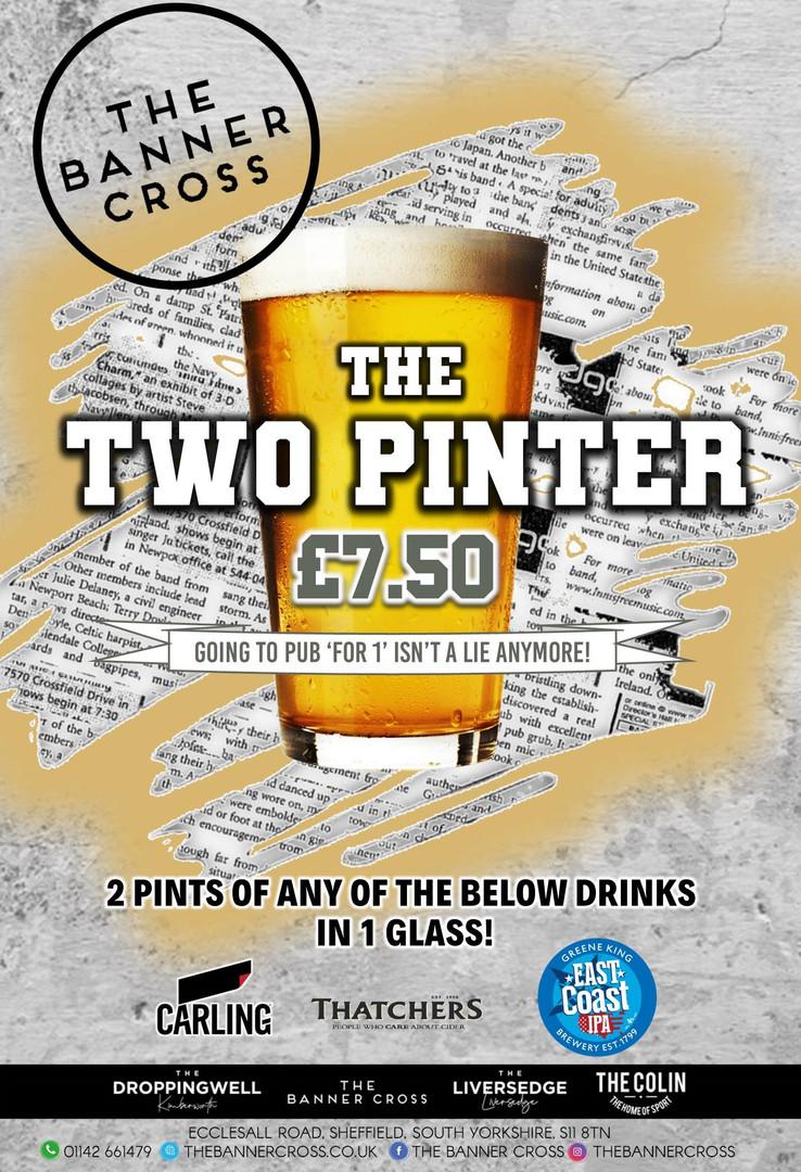 2 Pinter - Banner - Portrait.jpg