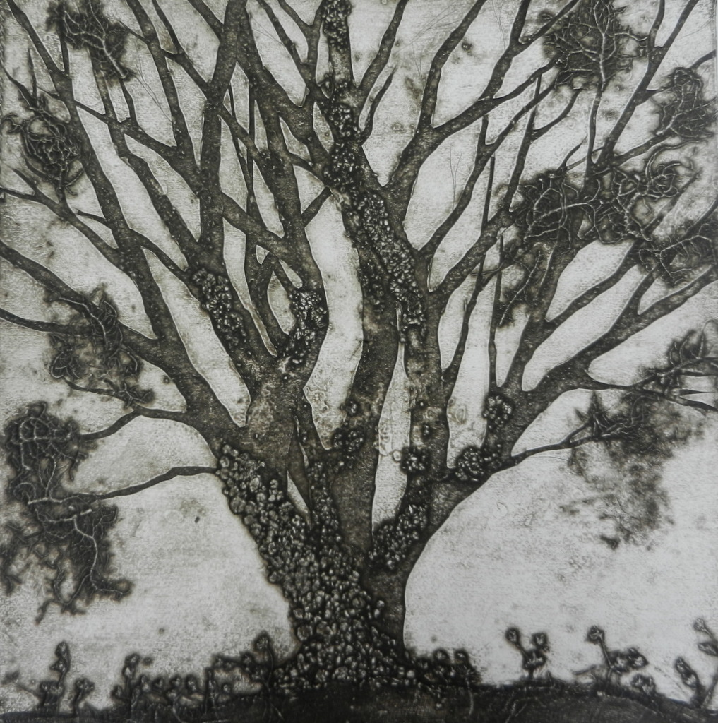 Ghost Tree Series 1