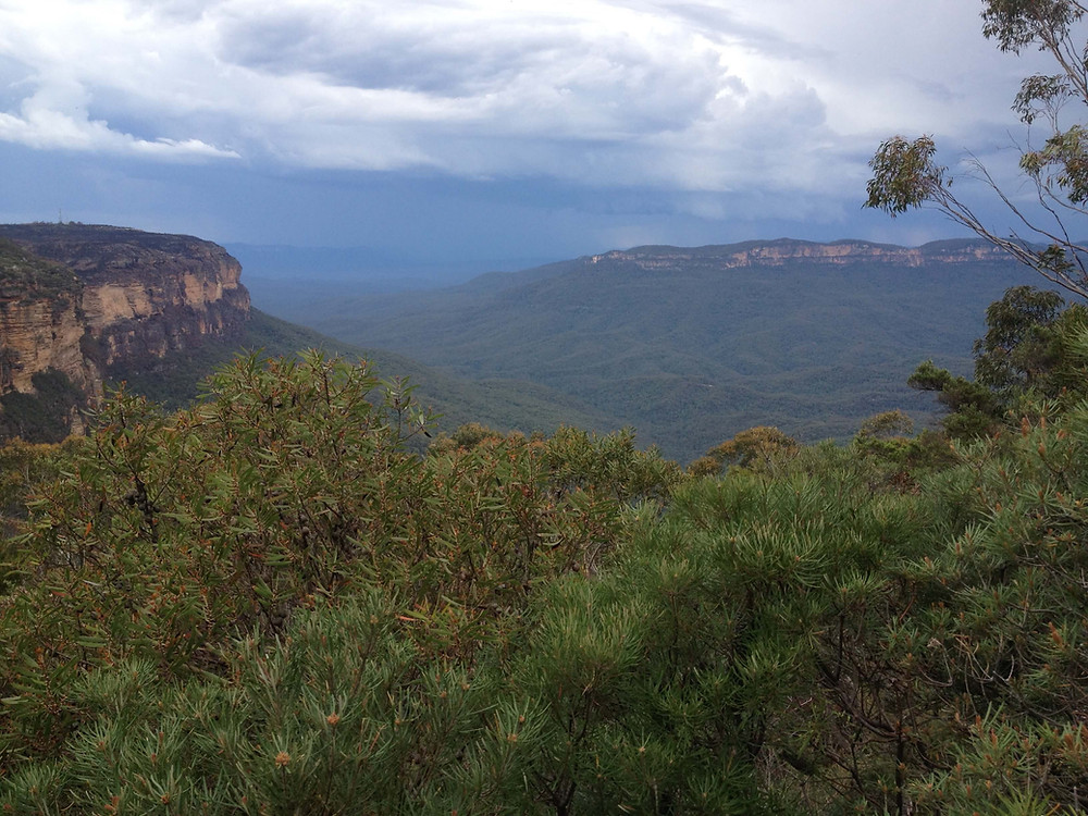 The Blue Mountains National Park
