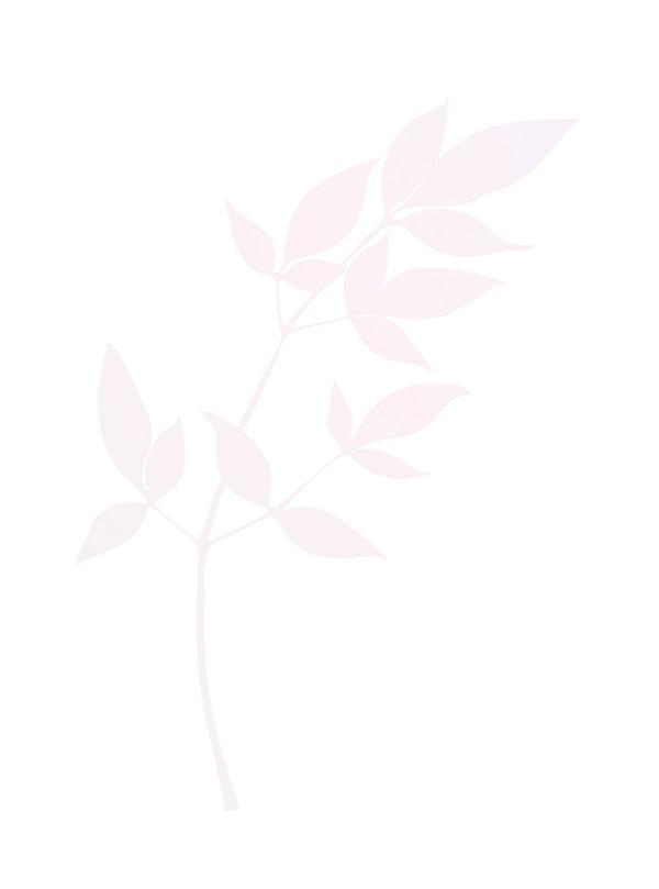 DE%252520branch_redpink-01_edited_edited