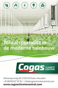 Advertentie Cogas.pdf.png