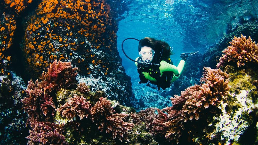 Riscos e recompensas do mergulho autônomo
