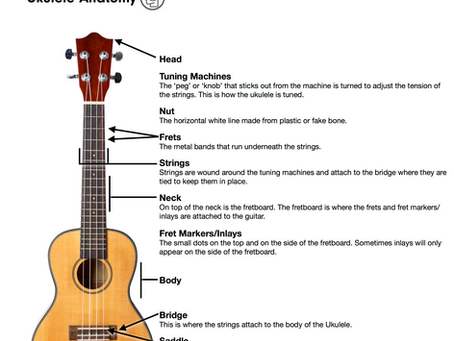 Learn the Parts of Your Ukulele