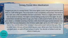 Snowy Forest: Meditation