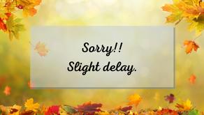 Slight Video Delay