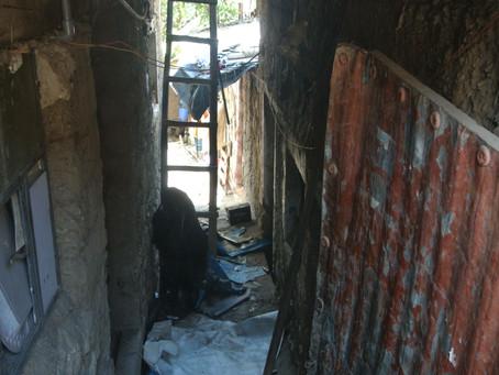 La Casa del Arbol – Une semaine hors du temps au plus près de la population du pérou. (Abancay)