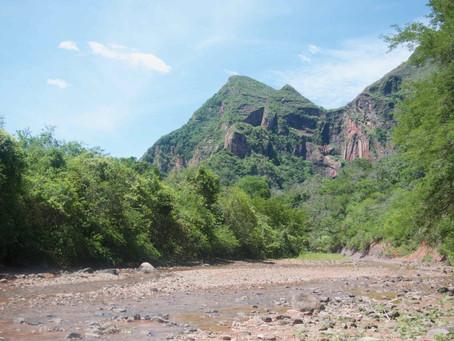 Le parc Amboro – 3 jours à côtoyer la jungle.