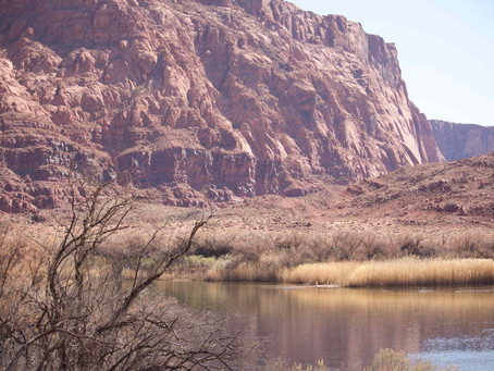 Parcs Nationaux Ep 7 : Glen Canyon & Horseshoe Bend.