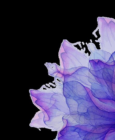 1violet.png