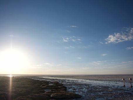 Le tour du salar d'Uyuni – Jour 3, 4 & le dernier!