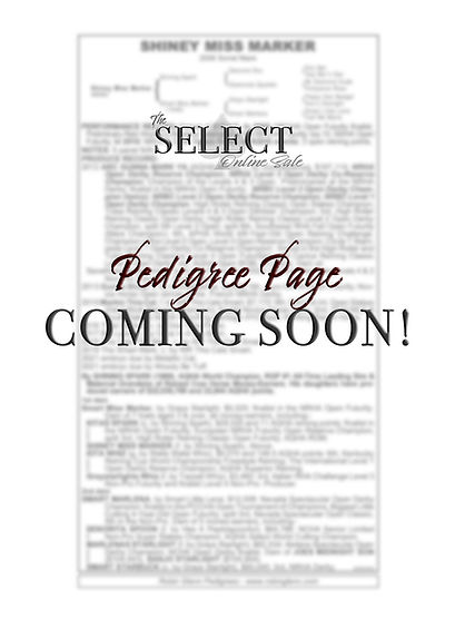 Pedigree Page.jpg