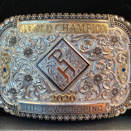 Metallic Cattack - 2020 APHA World Champion