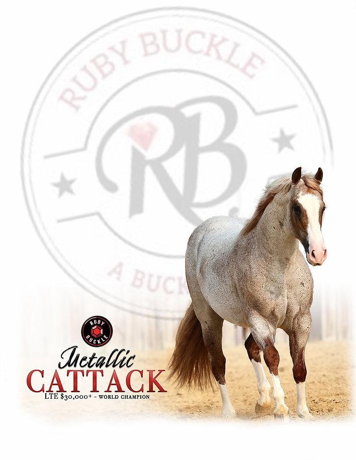 RubyBuckle-TictacAd.jpg