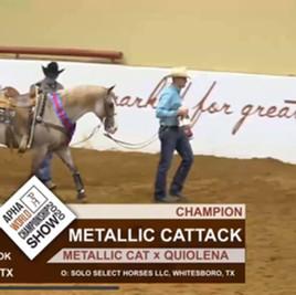 Metallic Cattack