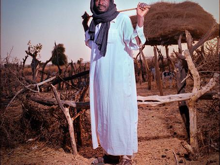 "PHOTO: ""Mali Roots"" de Mehdi Nédellec"