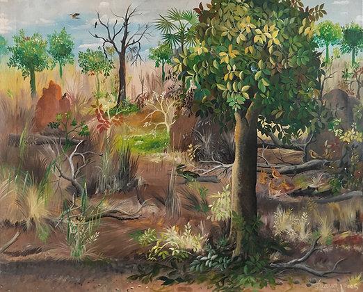 Idrissa Diarra, Forêt tropicale n°3