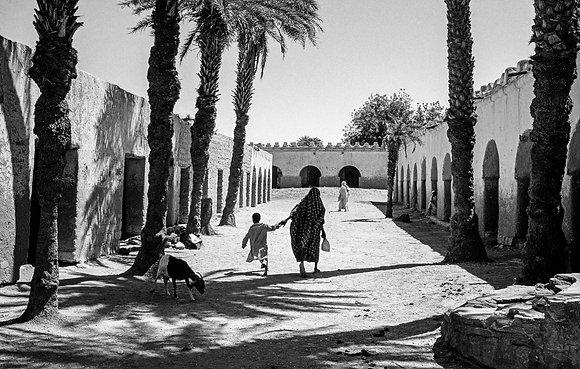 José Nicolas - Palmeraie de Faya-Largeau, Tchad, 1987 -
