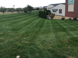 Mowing 7