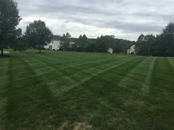 Mowing 9