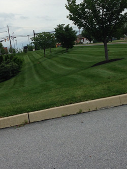 Mowing 8