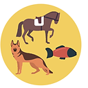animal icon.png
