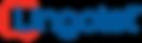Lingolet Logo