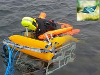 Robô salva-vidas autônomo identifica afogamento e salva pessoas sozinho