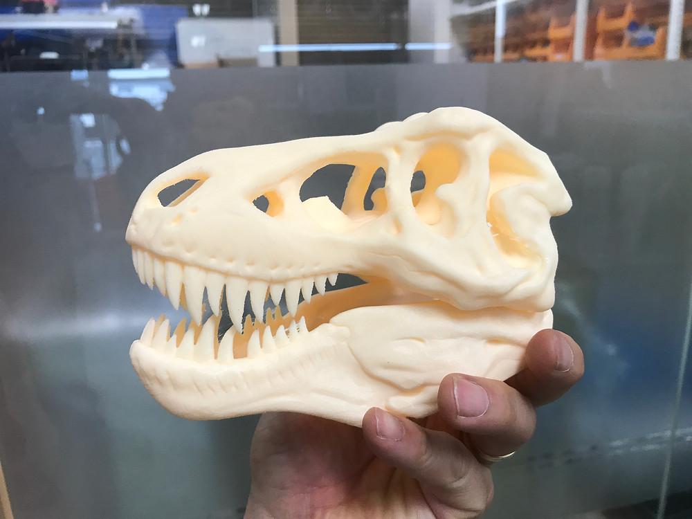 완성된 공룡 얼굴뼈 (0.1mm 두께)