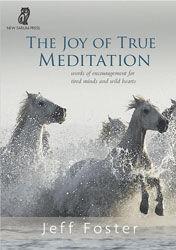The-Joy-of-True-Meditation.jpg