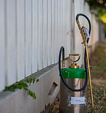 Total Pest Inspection Townsville.jpg