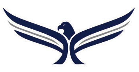 Faith Falcon Logo.jpg