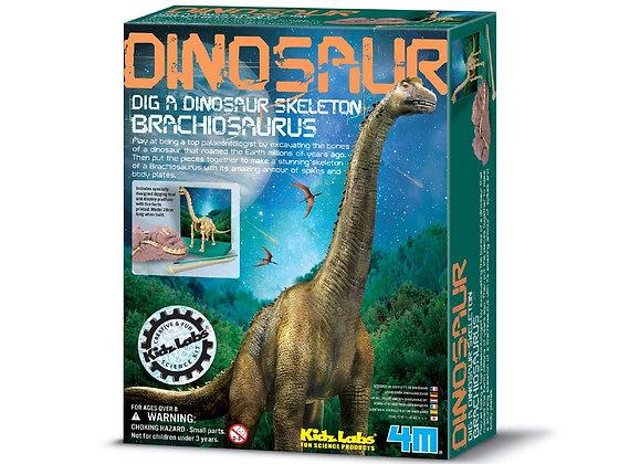 דינוזאורים - ערכת חפירה