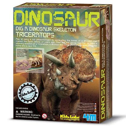 חפירת שלד דינוזאור Triceratops