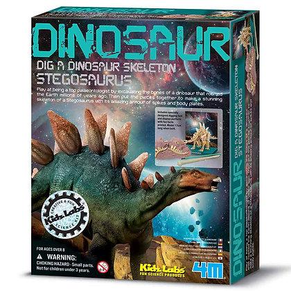 חפירת שלד דינוזאור Stegosaurus
