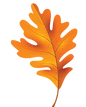 Orange Maple copy.png